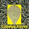 catappa-sticks